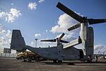 VMM-265 lands aboard MCAS Iwakuni, begins preparation for support of Exercise Forest Light 141206-M-YE622-247.jpg