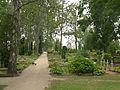 Valga Tartu tänava kalmistu 2.jpg