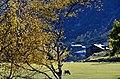Vall de Sorteny (Ordino) - 46.jpg