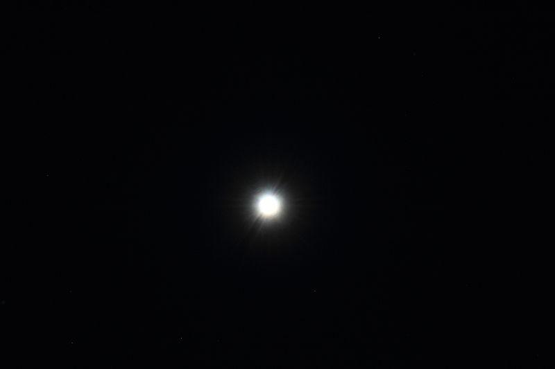 Vega 2.JPG