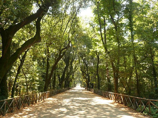 Promenade dans le parc de Capodimonte à Naples.
