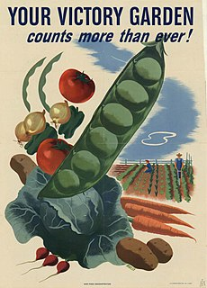 Victory garden vegetable, fruit, and herb gardens planted at private residences or public parks in many countries during World War I and World War II