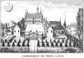 Vieux-joncs.png