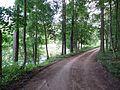 Vievio sen., Lithuania - panoramio (28).jpg
