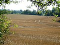 View from the old Roman Road - geograph.org.uk - 534987.jpg