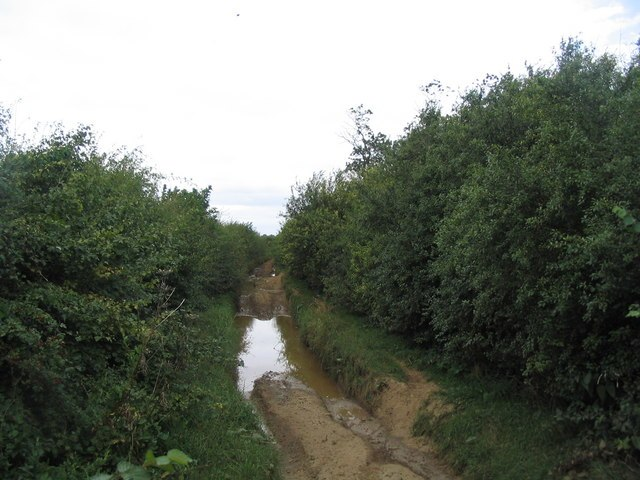 Viking Way, getting impossible - geograph.org.uk - 544380