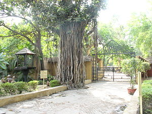 National Handicrafts and Handlooms Museum - Village Complex Area, Crafts Museum, New Delhi