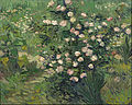 Vincent van Gogh - Roses - Google Art Project.jpg