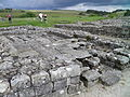 Vindolanda fort, UK (15328183451).jpg