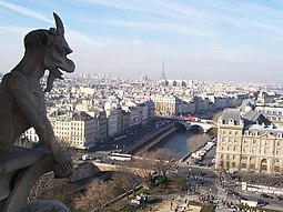 Vista desde Notre Dame