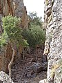Vistas desde el Castillo de Cabañas 03.jpg