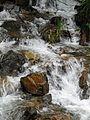Vodopad-Kopaonik - panoramio - Zlatomir Bacic (Back….jpg