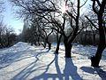 Volgodonsk, Rostov Oblast, Russia - panoramio (2).jpg