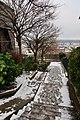 Vue de Suresnes depuis les coteaux 35.jpg