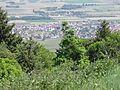 Vue depuis le château du Hohlandsbourg (654 m) - ville (Eguisheim).jpg