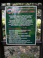 Vylet k Cernemu jezeru Sumava - 9.srpna 2010 130.JPG