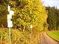 Waldweg, Landwassereck - geo.hlipp.de - 22783.jpg