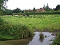 Water meadows, Wimborne St Giles - geograph.org.uk - 920453.jpg