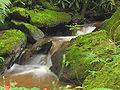 Waterfall in Paulo de Frontin.jpg