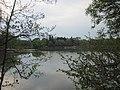 Weiming Lake, Peking University, 2011042201.jpg