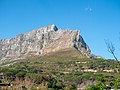 Wikimania 2018, Cape Town ( 1050202).jpg