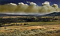 Wildfire in Yellowstone National Park produces Pyrocumulus clouds.jpg