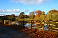Wonderful Autumn View in Tyne Green Park - panoramio - somaliayaswan.jpg