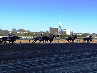 Aqueduct Racetrack - Horses approach the finish line in the 2012 Wood Memorial Stakes.