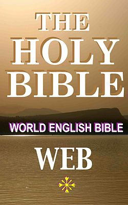 FREE BIBLE PDF IN ENGLISH NIV EPUB