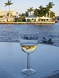 World reflected in a glass of wine.jpg
