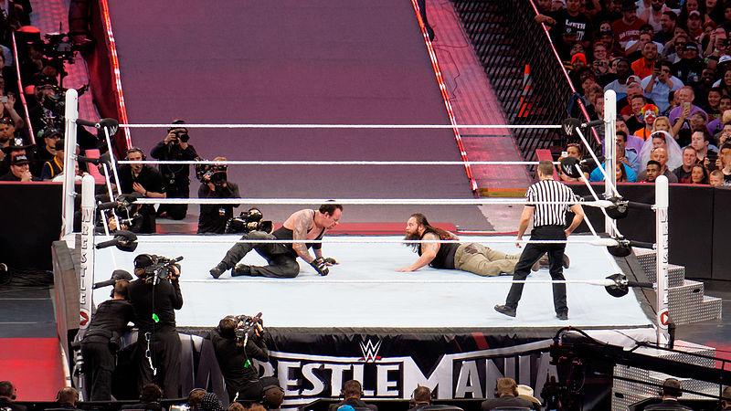 File:WrestleMania 31 2015-03-29 19-23-09 ILCE-6000 9468 DxO (18113000962).jpg