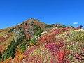 Yellow Aster Butte at Mount Baker Wilderness in Washington 1.jpg