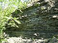 Zalishchyky bed of Lower Devonian (3).jpg