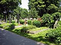 Zentralfriedhof Grabreihe1.JPG