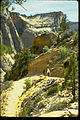 Zion National Park ZION9543.jpg