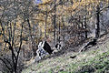 Zlatnice - skalní ostroh4.jpg