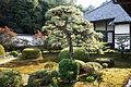Zuishinin Kyoto05s3s4350.jpg