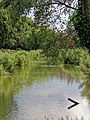 'The Butts' medieval defensive ditch at Sandwich, Kent England 03.jpg