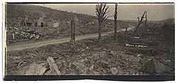 (Ruines du village d'Allemant) - Fonds Berthelé - 49Fi1774.jpg