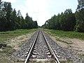 Šilų sen., Lithuania - panoramio (13).jpg
