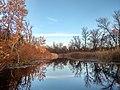 Акваторія одного із заплавних озер водно-болотного угіддя Дніпровсько-Орільська заплава.jpg