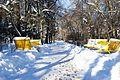 Аллея в парке зимой - panoramio.jpg