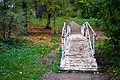 Березовый мостик.JPG