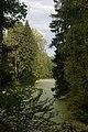 Большой Нижний Новошалейный пруд96.jpg