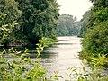 Вдалині водопій на річці Псел (Заказник Хорішки).jpg