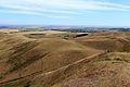 Вид с вершины Козьих гор - panoramio.jpg