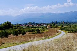 Panoramic view of the village Dolna Bela Crkva