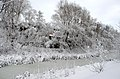 Горсад, Чернигов, зима.jpg