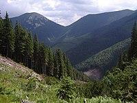 Долина потоку Котелець з райсштоку на схилах г. Грофа.JPG
