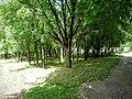 Зоопарк-Ловеч - panoramio (2).jpg